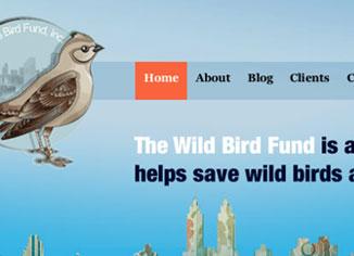 Wild Bird Fund