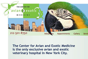 Center for Avian Exotic Medicine