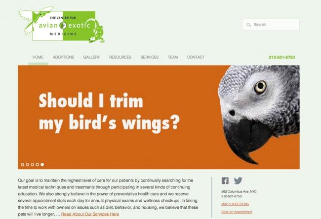 Avian Vet Website