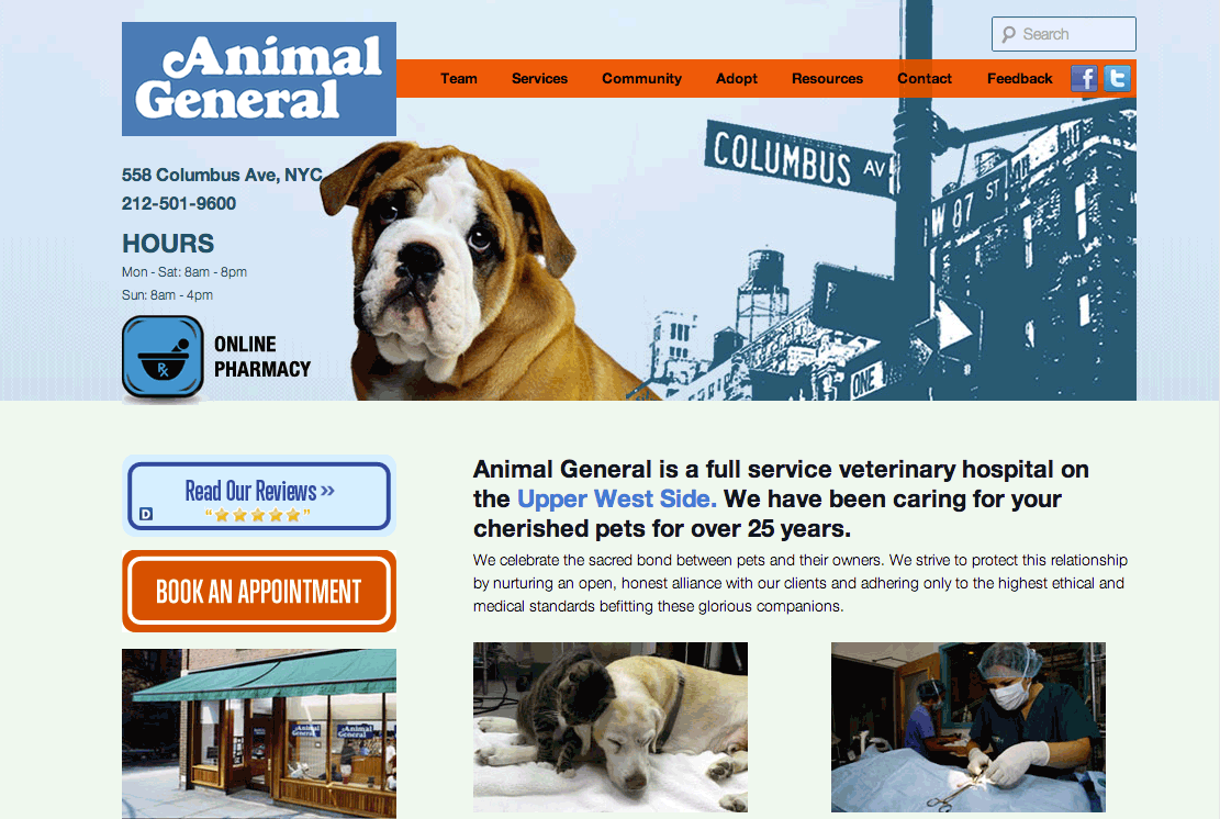 Veterinarian Website Design